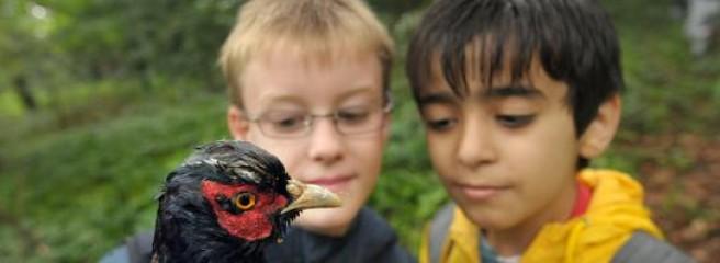 Foto von zwei jungen Schülern